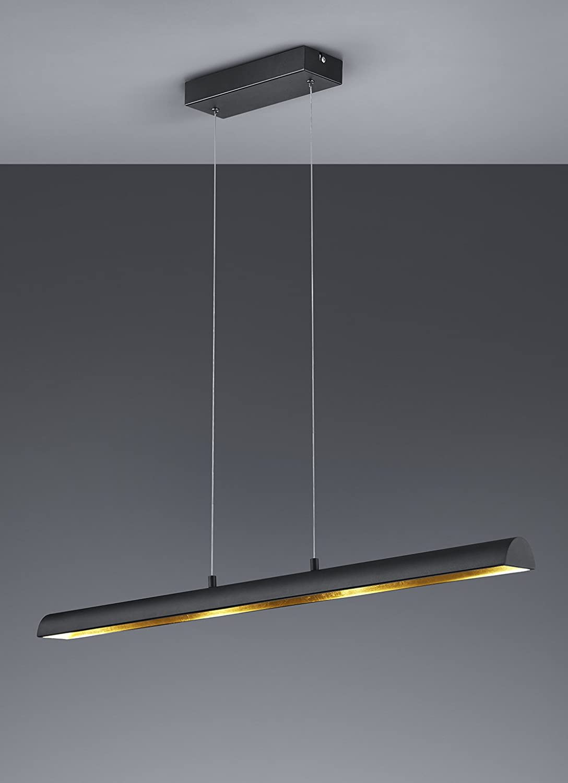 Trio Leuchten LED Vintage Ramiro Pendelleuchte, Metall, SMD, 4.5 W, schwarz/goldfarbig Schwarz/Goldfarbig