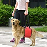 Novadeal Dog Support Rehabilitation Harness Sling Dog Lift Harness - Cozy Soft Double Extra Strong Fabric Tape with Handle for Weak and Injuries Hind Leg or Joint Support