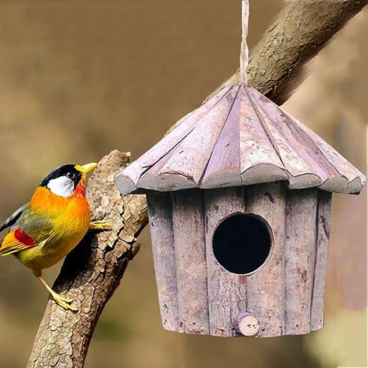 Cozyhoma Casa de pájaros de Madera, para Colgar al Aire Libre, Hecha a Mano para Exteriores, Caja de pájaros para tragar, gorrión, colibrí y petirrojo, B: Amazon.es: Jardín