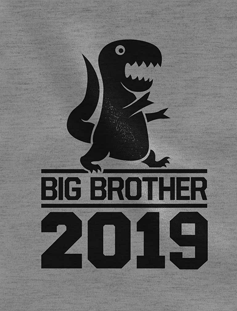 Tstars Gift for Big Brother 2019 T-Rex Boy 3/4 Sleeve Baseball Jersey Toddler Shirt GaMPthrgm8