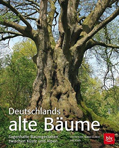 Deutschlands alte Bäume: Sagenhafte Baumgestalten zwischen Küste und Alpen