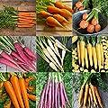 David's Garden Seeds Collection Set Carrot RT9345 (Multi) 9 Varieties 4000 Plus Seeds (Open Pollinated, Heirloom, Organic)