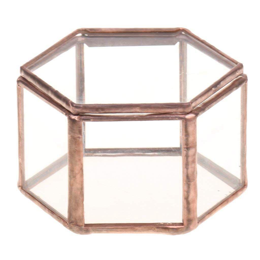 SODIAL Forma di esagono di deco del vaso della pianta di vetro della scatola di gioielli geometrica di terrario di vetro geometrica