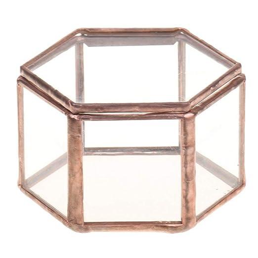 FZGZSW Maceta De Flores Geométrica Caja de Cristal para terrario Joyero de Vidrio Planta suculenta Olla Deco Forma Hexagonal: Amazon.es: Jardín