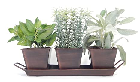Kitchen Herb Garden (Chocolate)   3 Metal Containers W Tray, 5 Herb Packets