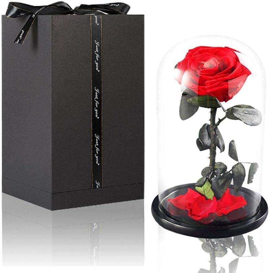 Amycute La Bella y la Bestia Rosa eterna Glass Dome Rose Roja con Exquisita Caja Principito Flor Películas de Disney para Decoración del hogar,Boda,día de San Valentín, Navidad,cumpleaños,Aniversario: Amazon.es: Hogar