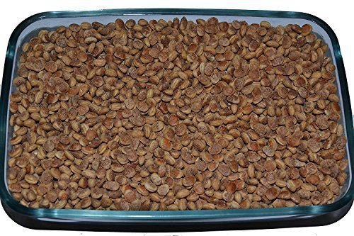 Leeve Dry Fruits Almondette Kernels Charoli Chironji - 200 Gms by Leeve Dry Fruits (Image #3)