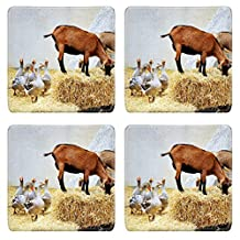 MSD Square Coasters IMAGE 20407501 Animals in the farm goats and geeses