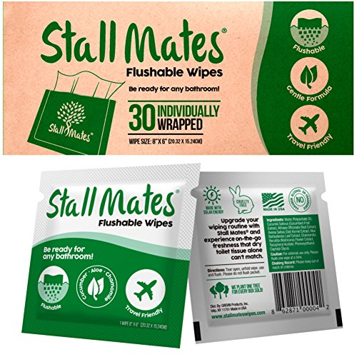 Stall Mates: Flushable, individually wrapped wipes for travel. (30 on-the-go singles)