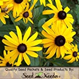 500 Seeds, Black-Eyed Susan (Rudbeckia hirta) Seeds by Seed Needs
