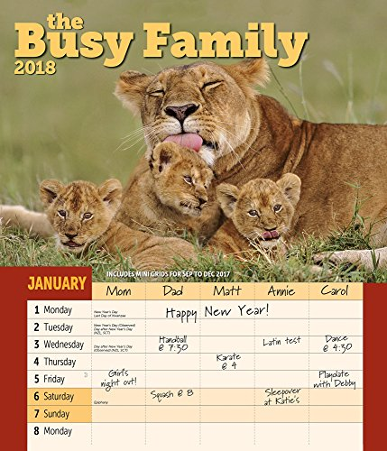 Busy Family Calendar - 1