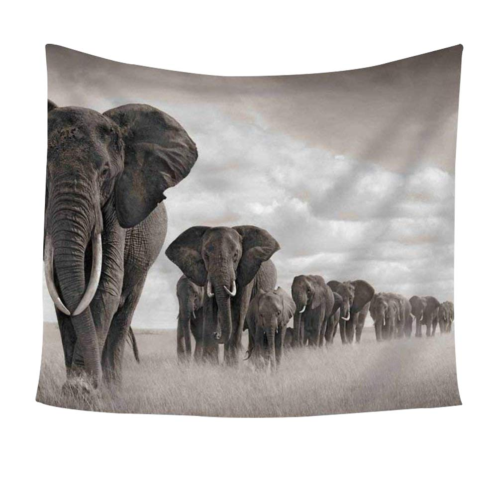 Elephant Tapestry Elephant Walking On The African Savannah Wall Hanging Tapestry - Polyester Fabric Wall Art Tapestries Home Decor - 59'' x 51'' Inches Inches by Chengsan