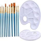 Elisel 10 Pcs Paint Brushes Watercolor Brushes Art Paint Brush Set and 4 Pcs Paint Palette for Kids and Adults to Create…