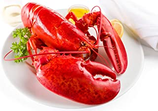 product image for Maine Lobster Now - 2.5 lb Live Maine Lobster (4 Pack)