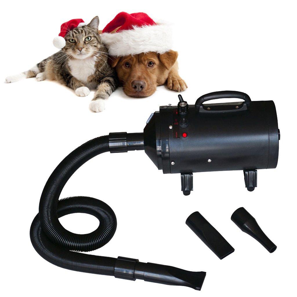 vidaXL 2400W TOP Hundef/ön /& Hunde Fl/üsterf/ön TIERF/ÖN Hundetrockner Pet DOG Dryer