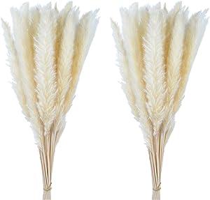 """60 Pcs Pampas Grass 18"""" ,Dried Pompous Grass Pompass Branches for Vase Flower Arrangement Wedding Kitchen Home Decor(White)"""