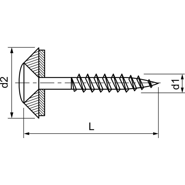 Antrieb TX20 Innensechsrund Werkstoff A2 mit EPDM-Dichtscheibe 15 mm 100 Spenglerschrauben Edelstahl 4,5 x 100 mm 2tlg VA // V2A