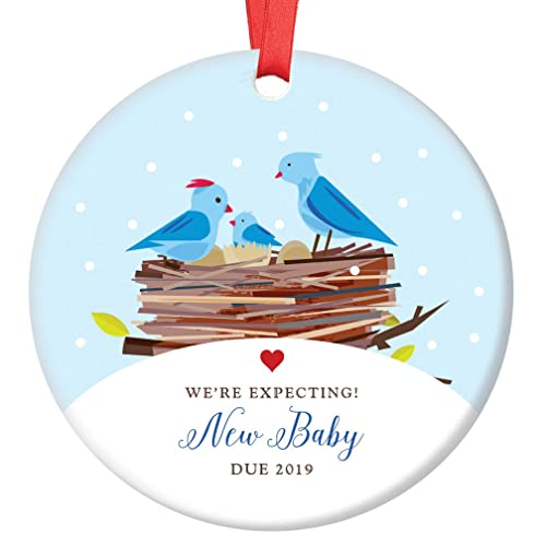 Expecting Parents Ornament, 2019 Pregnancy Announcement Porcelain Ornament,  Baby Bird New Baby Gift, - Amazon.com: Expecting Parents Ornament, 2019 Pregnancy Announcement