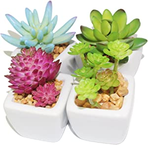 Myartte Home Decor Artificial Shrubs-Set of 4 Different Artificial Succulent Plant for Home Decoration Office Decoration (4A Ceramic Pot)
