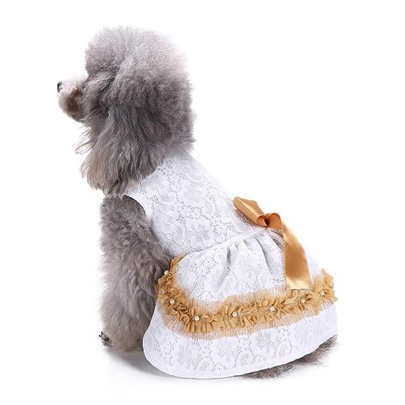 Ropa para Mascotas,Dragon868 Elegante Encaje Boda Princesa Perros Vestidos de niñas: Amazon.es: Ropa y accesorios