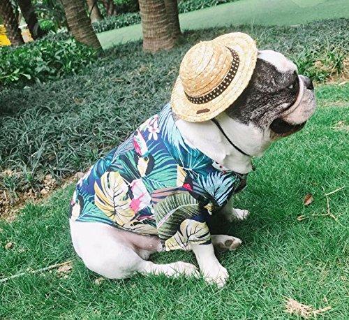 OHlive Ropa de Perro Camisa de Mascota Hawaii Style Cat Camisa de Perro Transpirable Blue L