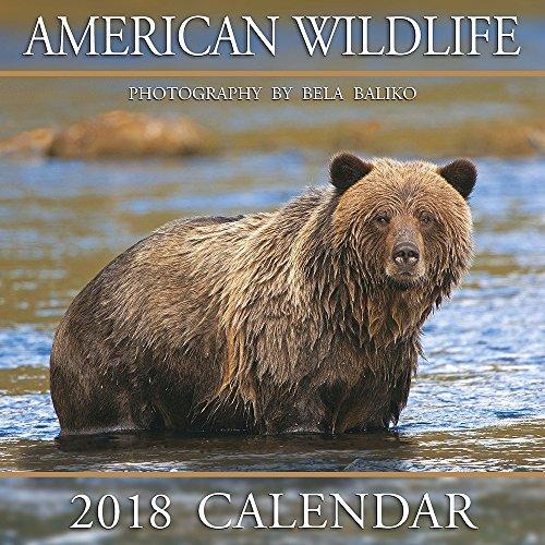 2018 Baliko American Wildlife Wall Calendar supplier