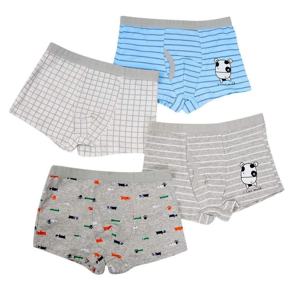 Closecret Kids Series Baby Underwear Little Boys' Cotton Boxer Briefs (Pack of 4) (Style 1, 2-3 Years)