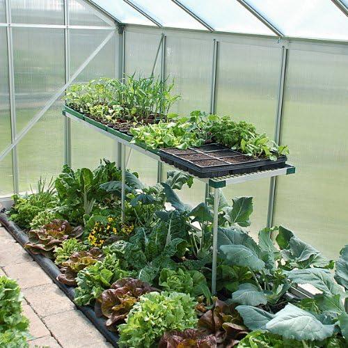 Beckmann Invernadero de mesa 200 x 50 cm: Amazon.es: Jardín
