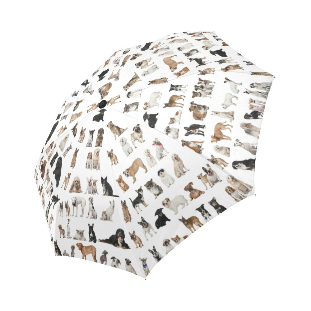 InterestPrint Funny Dog Paw Prints Footprints Windproof Auto Open and Close Foldable Umbrella Lightweight Portable Outdoor Sun Umbrella with UV Protection