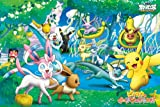 Pokemon Best Wishes Pikachu and Eevee Friends 500 Large piece Let's Play in the Eevee Friends everyone 500-L154 by Ensky