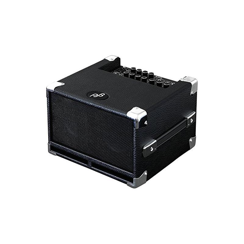 Phil Jones Bass Cub Bass Combo Amplifier