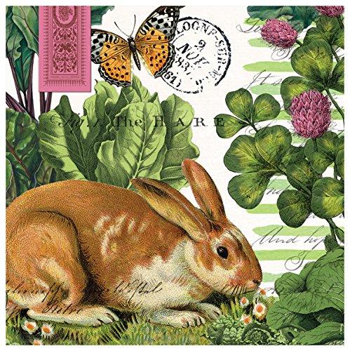 Michel Design Works 20-Count 3-Ply Paper Luncheon Napkins, Garden Bunny