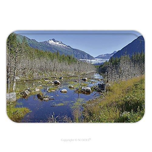 Flannel Microfiber Non-slip Rubber Backing Soft Absorbent Doormat Mat Rug Carpet Wilderness Landscape In Alaska Usa 209458060 for - Tailgate Alaska