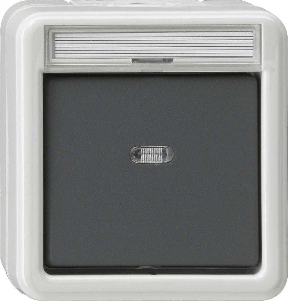 Gira 011230 Kontroll-/Aus-Schalter 2-polig, Wassergeschützt Aufputz ...