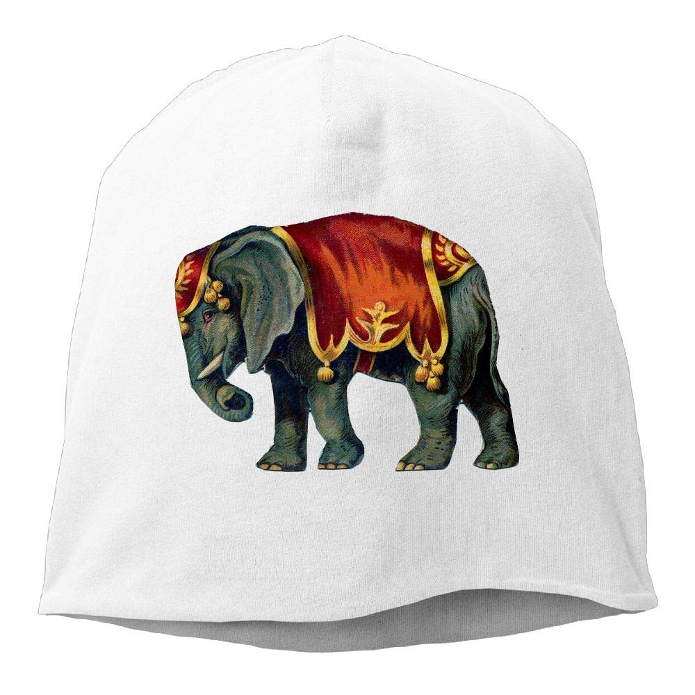 Janeither Headscarf Colorful Lovely Elephant Hip-Hop Knitted Hat for Mens Womens Fashion Beanie Cap