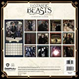 Fantastic Beasts Calendar 2017 -- Deluxe Fantastic Beasts and Where to Find Them Movie Calendar (12x12)