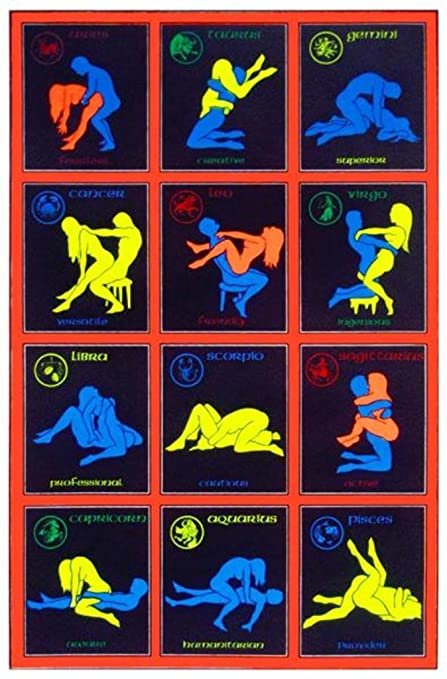 Sex position for libras