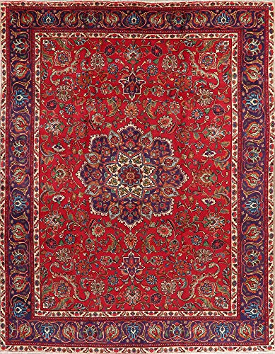 Tabriz Wool Area Hand-Knotted Rug Persian Oriental Floral Red Vintage Carpet 10 X 13 (12' 10'' X 9' 8'')
