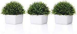Opps Mini Artificial Plastic Plants Fake Green Grass in White Ceramic Pot for Home Décor - Set of 3
