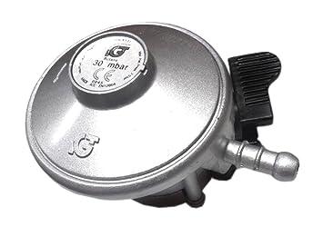 Regulador de bombona de butano clip-en 21 mm con montaje para barbacoa Caravan Camping Gas estufa GLP: Amazon.es: Jardín