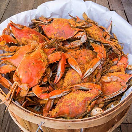 Cameron's Seafood Large Maryland Blue Crabs Males Jimmys Steamed (Bushel) (Crabs Maryland Blue Steamed)