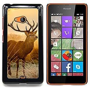 Qstar Arte & diseño plástico duro Fundas Cover Cubre Hard Case Cover para Nokia Lumia 540 (Majestic cervo)