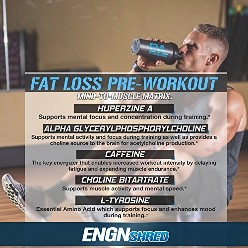 Evlution-Nutrition-ENGN-SHRED-Pre-workout-Thermogenic-Fat-Burner-Powder-Energy-Weight-loss-30-Servings