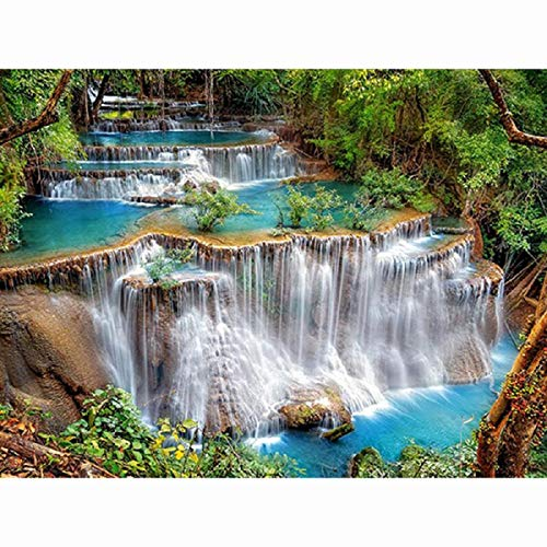 DIY 5D Diamond Painting Dartphew by Number Kits, Crystal Rhinestone Embroidery Pictures Arts Craft for Home Wall Decor - Blossoms Waterfalls Castles - Reduces Eye Strain ()