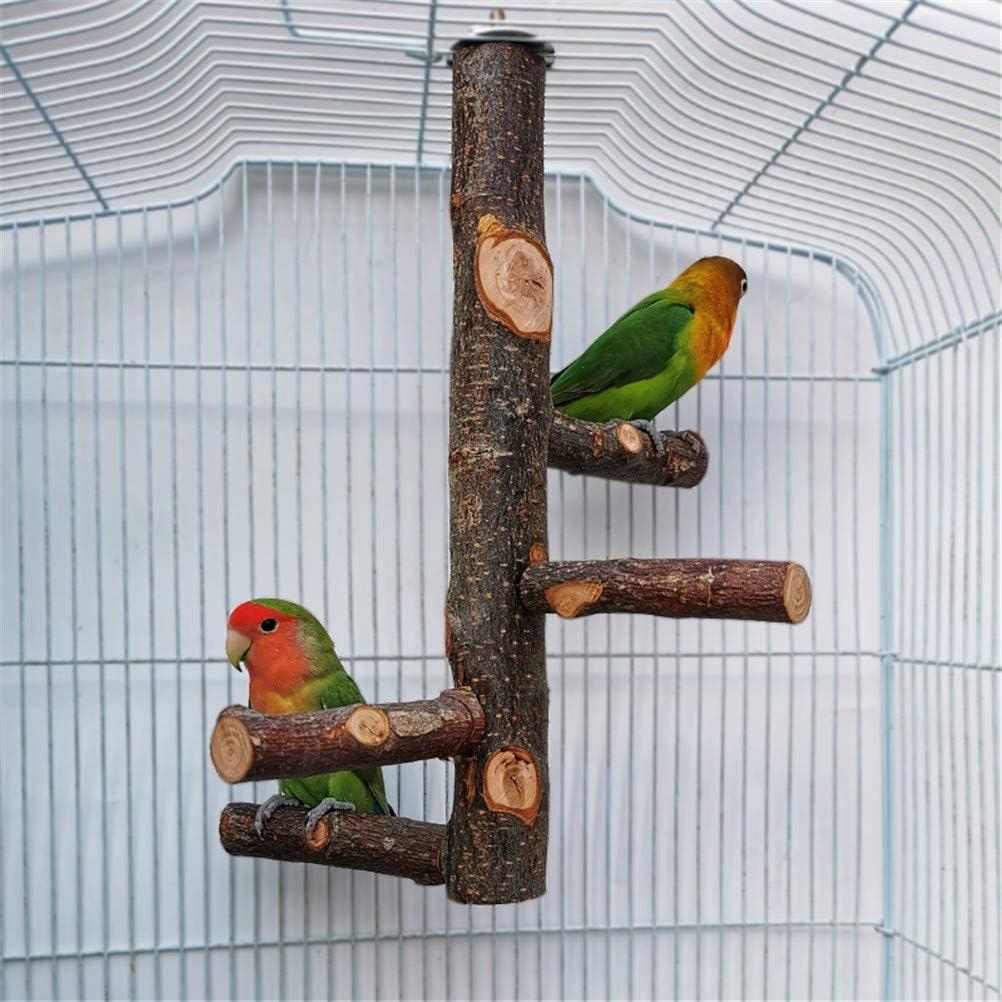GUALA Bird Rest Bracket Parrot Spiral Staircase Natural Apple Wood Stand Rest Rack Bird Gym Playground