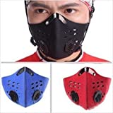 Bei wang Wind /Dust/ Cold-Proof Face Mask with filter for Cycling bicycle Motorcycle ski Outdoor Sport (Black)
