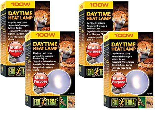 Neodymium Daylight Terrarium Lamp - (4 Pack) Exo Terra Sun-Glo Neodymium Heat Lamp, 100 Watt