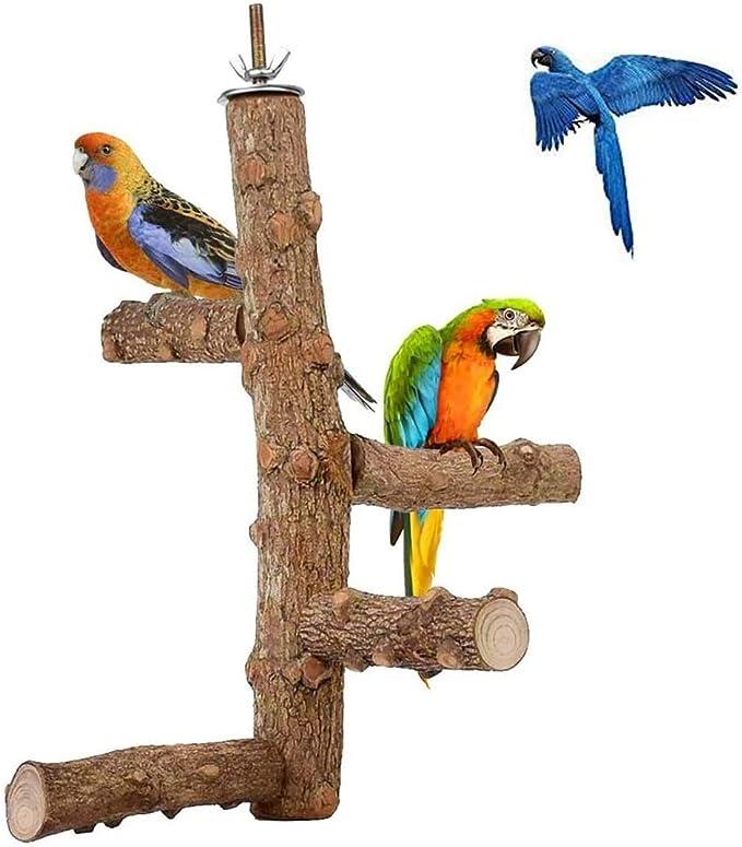 Pájaro de pájaros de madera natural, loro madera áspera perchas pata palo de molienda, juguete de soporte de aves para periquitos pequeños, pinzones, budgie, guacamayos, cockatiel, lovebirds (4 sucurs