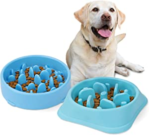 JASGOOD Dog Feeder Slow Eating Pet Bowl Eco-Friendly Durable Non-Toxic Preventing Choking Healthy Design Bowl for Dog Pet