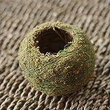 TiTa-Dong Natural Moss Ball Bonsai Green Sphagnum Moss Substrate Garden Plant Potted Hydrating Flowerpot